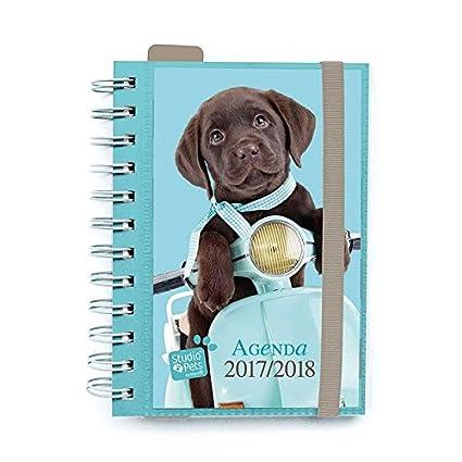 Agenda Escolar 2017/2018 Studio Pets Perro (en Frances ...