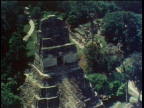 Maya Lords of the Jungle