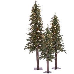 Vickerman A805180 - Natural Alpine Christmas Trees, 2' 3' 4', Green - Unlit