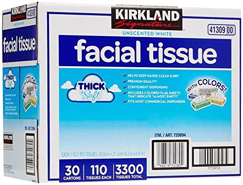Kirkland Signature Facial Tissue, Lodge Pack - 110 ct - 30 p