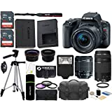 Canon EOS Rebel SL2 DSLR Camera with Vari-Angle LCD + 18-55mm IS STM Lens + 75-300mm III Lens + SanDisk 32GB & 16GB Card + Wide Angle + Telephoto Lens + Flash + Grip + Tripod - 48GB Accessories Bundle