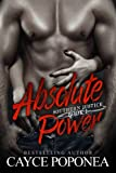 Absolute Power (Southern Justice) (Volume 1)