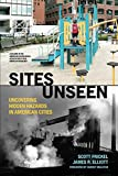 img - for Sites Unseen: Uncovering Hidden Hazards in American Cities: Uncovering Hidden Hazards in American Cities (American Sociological Association's Rose Series) book / textbook / text book