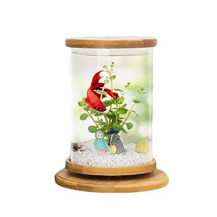 Mishap Tanque de Peces Ornamentales Giratorio, Mini Escritorio ecológico Creativo para Escritorio de Oficina,