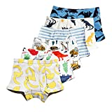 Aschic Little Boy's Soft Cotton Boyshorts Underwear Toddler Kid's 6-Pack Assorted Boxer Briefs (Multi 1, 4-5 Years)