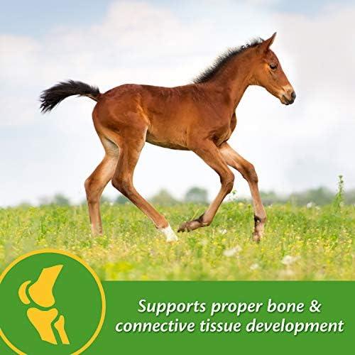 Farnam Grow Colt Growth & Development Supplement 3.75 pounds, 30 Day Supply