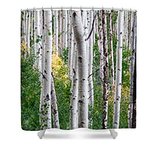 Green Aspen Trees - Pixels Shower Curtain (74