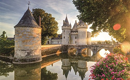 Leowefowa 5X3FT Castle Backdrop Chateau of Sully-Sur-Loire in Sunlight with Lens Flare France Flowers River Travel Vinyl Photography Background Kids Newborn Photo Studio - Sully Frame