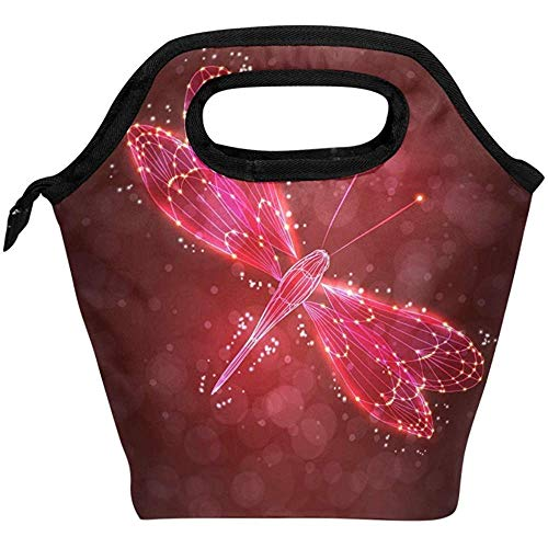Beatybag Print Premium Polyster Lunch Bag Shiny Abstract Dragonfly Fairy Insulated Reusable Lunch Box Portable Lunch Tote Bag Meal Bag Ice Pack for Kids Boys Girls Adult Men Women