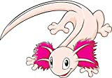 Mexican Axolotl Cartoon Home Decal Vinyl Sticker 14'' X 10''