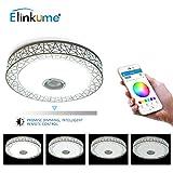ELINKUME Music LED Ceiling Light, High Sound Quality Speaker + Bluetooth Control via Smart Phone APP (B Ceiling Light)