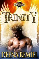 Trinity (Brethren Angel Series Book 1)