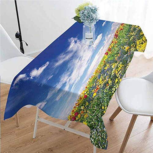 Flower Rectangular tablecloths in a variety of colors and sizes Flowers Meadow and Cloudy Sky Nature Landscape Print Vivid Sun Spring Art Home Decor Can be used for parties W70 x L120 Inch Multicolor