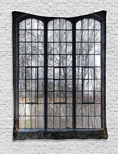 "Lunarable Industrial Tapestry, Old Large Window with Broken Panes Deserted Hall Forest Trees Winter, Wall Hanging for Bedroom Living Room Dorm Decor, 40"" X 60"", Green White"