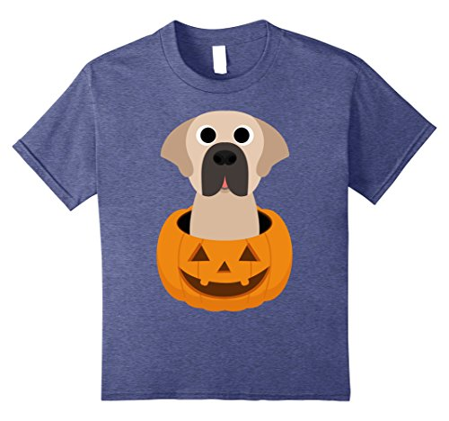 Saint Bernard Costumes (Kids Halloween costume gifts Saint Bernard dog lover t shirt 8 Heather Blue)
