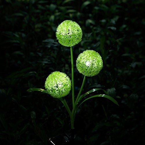 XLUX Outdoor Decorative Solar dandelion LED Lights, Green by XLUX