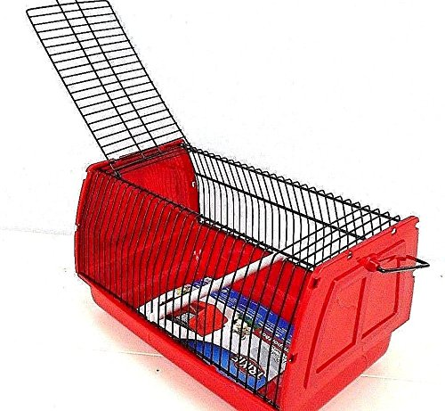 Trixie Bird Carrier Transport Travel Box Case for Birds, Hamsters, Small Animal (Medium 30 x 18 x 20 cm, White) Trix-ie