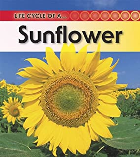 The Life Cycle of a Sunflower (Plant Life Cycles): Linda ...