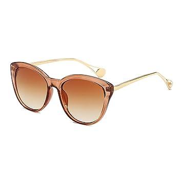Amazon.com: Z&HA - Gafas de sol para mujer, marco de carcasa ...
