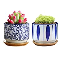 GeLive Japanese Ceramic Succulent Planter, Cactus Plant Pot, Flower Container with Bamboo Drip Tray, Set of 2 (Wave and Blue Flower)