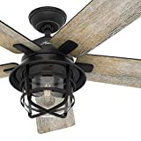 Hunter Fan 54 inch Casual Weathered Zinc Indoor Ceiling Fan with Light Kit