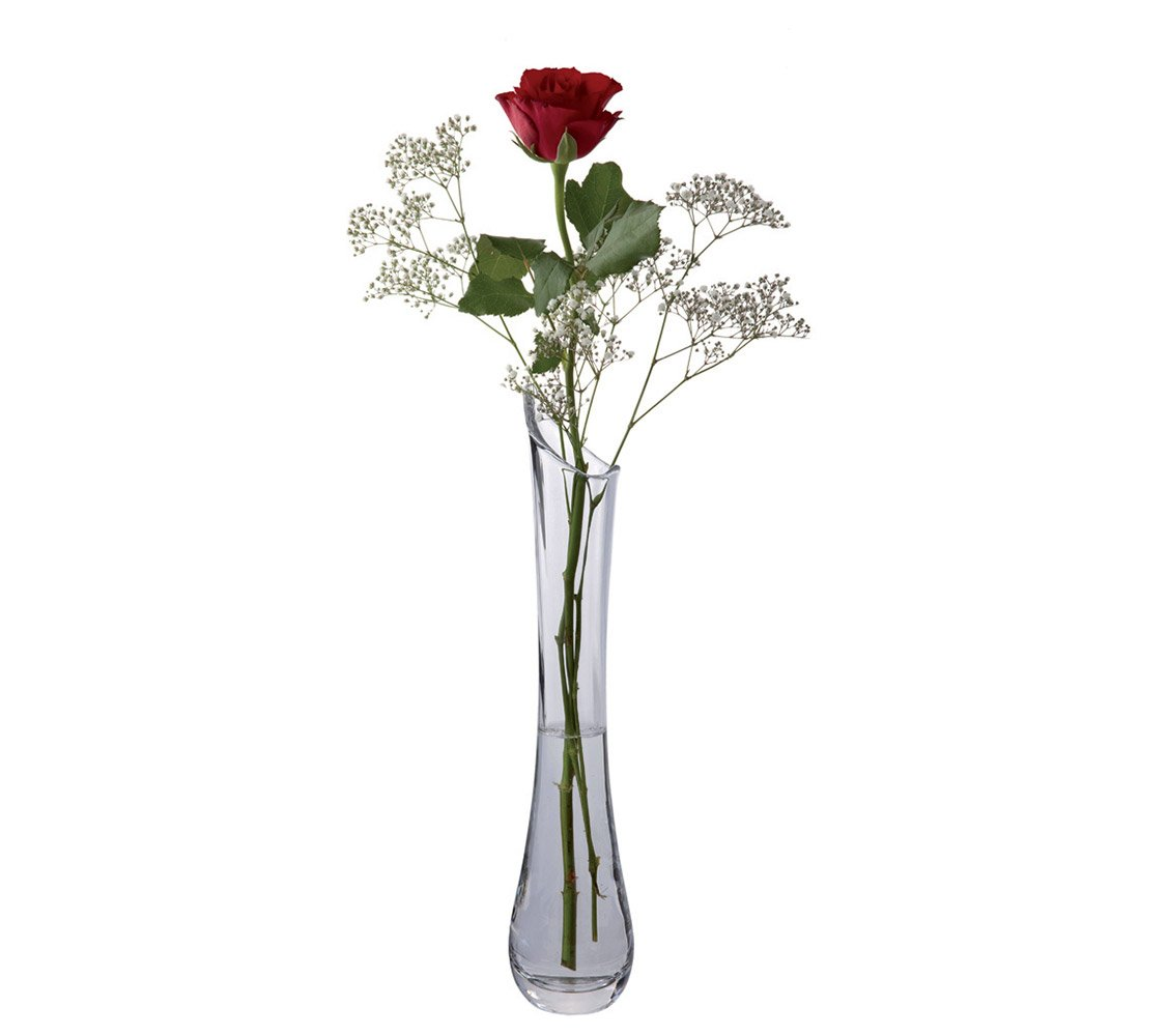 Amazon dartington crystal florabundance single rose vase amazon dartington crystal florabundance single rose vase garden outdoor floridaeventfo Choice Image