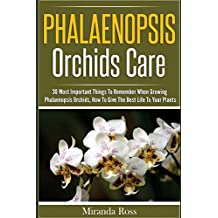 Phalaenopsis Orchids Care: 30 Most Important Things To Remember When Growing Phalaenopsis Orchids