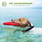 WOLFWILL-100-Waterproof-Rechargeable-Humane-No-Shock-Remote-Dog-Training-Collar-1980ft-Blind-Operation-with-Tone-Vibration-Light-Electric-Collar-Dogs22-to-88lbs