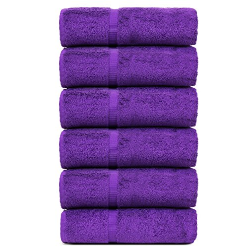 BC BARE COTTON Luxury Hotel & Spa Towel Turkish Cotton Hand Towels - Eggplant - Dobby Border - Set of 6 by BC BARE COTTON