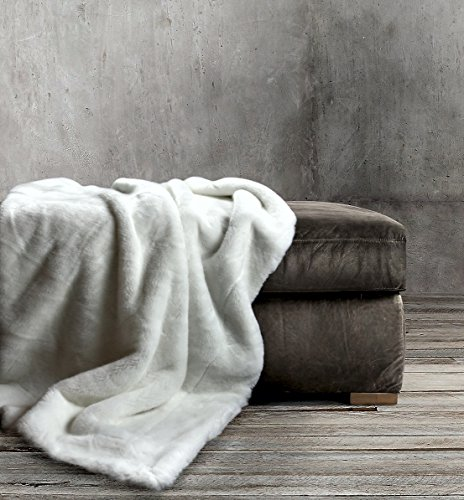Luxury Faux Fur Throw Blanket Super Soft Oversized Thick Warm Afghan Reversible to Plush Velvet in Tan Grey Wolf, Cream Mink or Blush Chinchilla, Machine Washable 60 by 70 Inch (Off White) (Extra Thick Throw Blanket compare prices)