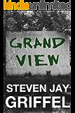 GRAND VIEW (David Grossman Series Book 3)