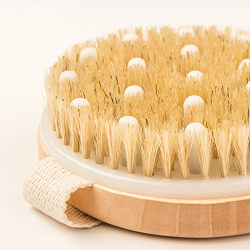Dry Brushing Body Brush - Best for Exfoliating Dry Skin, Lymphatic Drainage and Cellulite Treatment - Organic Spa Exfoliation and Massage Scrub Brush with Natural Boar Bristles by Rosena (Image #7)