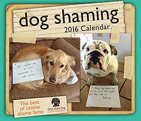 Dog Shaming 2016 Day-to-Day Calendar (New York 2015 Calender)
