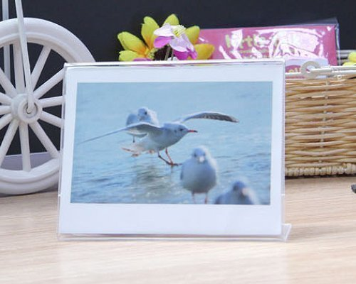 Helloween Acrylic 5 Inch Stand Wide Instant Photo Frame for sale  Delivered anywhere in Canada