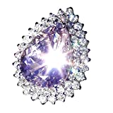 Challyhope Hot Sale! Chic Lucky Natural Silver Gemstone Amethyst Birthstone Shining Ring For Women Gifts Mother's Day (Purple, 9)