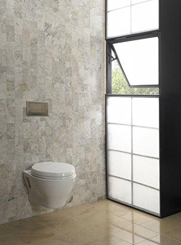Toto CT418FGNo.01 Aquia Wall-Hung Dual-Flush Toilet, 1.6-GPF and 0.9-GPF Cotton - CT418FG#01
