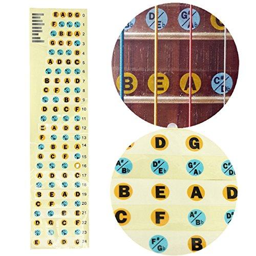 Bass Guitar Fretboard Note Labels Fret (Bass Guitar Notes)