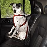 SMALL / MEDIUM – RED – Dog Car/Truck Safety Harness – Adjustable Nylon Web with Quick Release Buckles, My Pet Supplies