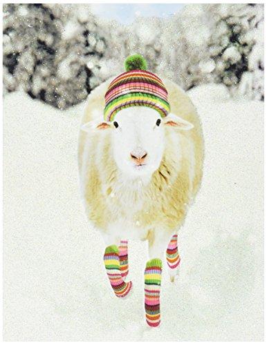 Sheep Boxed - 7