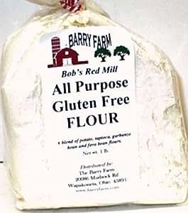 Amazon.com : All Purpose Gluten Free Flour, 1 lb. : Non