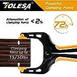 TOLESA 6-Piece Nylon Spring Clamp Set-2 Pcs 7 Inch