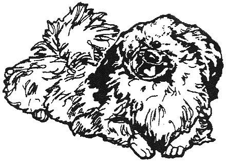 Dog Rubber Stamp - Pekingese-3D (Size: 2-1/4