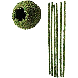 "Galapagos 6"" Green Mossy Cave Hide and Mossy Terrarium Hanging Sticks 18"" (6 Sticks)"