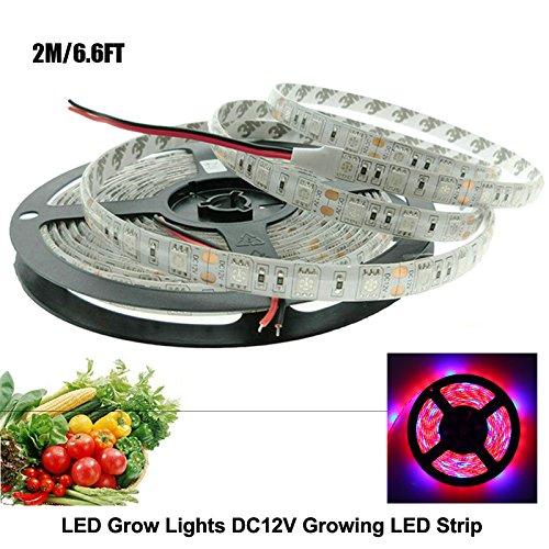 Led Grow Light Rail - 5