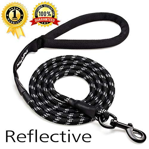 Migoo Pet - Climbing Rope Dog Leash with Soft handle - 6 ft Long Nylon Heavy Duty Dog Leash For Large Dogs - Premium Quality Colorful Dog Walking Leash For Small Medium Dogs
