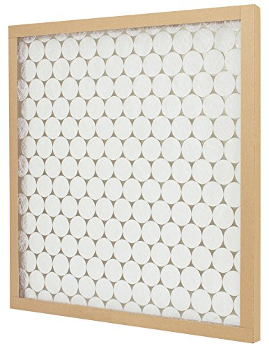 Flanders PrecisionAire 10155.01202 E-Z Flow Air Filter, MERV 4, 20 x 20 x 1-Inch, 12-Pack