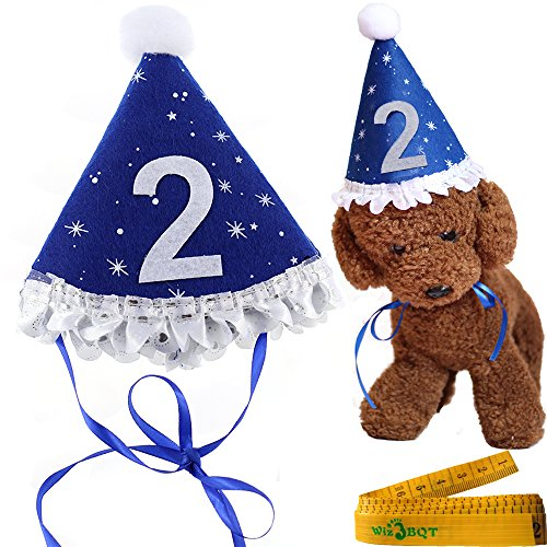 Blue Pet Dog Cat Birthday Holiday Party Hat Headwear Costume Accessory with a White Ball and Lace for Small Medium Dogs Cats Pets (2-2nd year)
