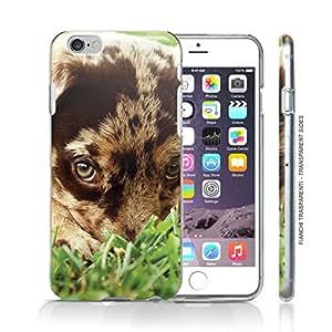 Funda Carcasa dura para Apple iPhone 6 PLUS - Perro Border Collie