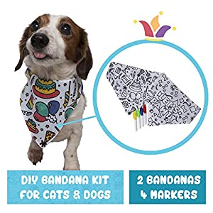 Pet Krewe Birthday Dog Bandana | Dog Birthday Party Supplies | DIY Kit Includes 2 Pet Bandanas & 4 Non-Toxic Fabric Markers for Dog or Cat | One Size Fits Most