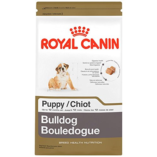 ROYAL CANIN BREED HEALTH NUTRITION Bulldog Puppy dry dog food, 30-Pound
